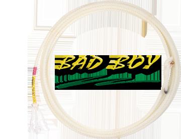 Bad Boy - 31'