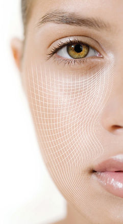 CACI-Face Grid.jpg