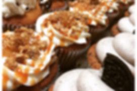 Cupcakeology Cupcakes