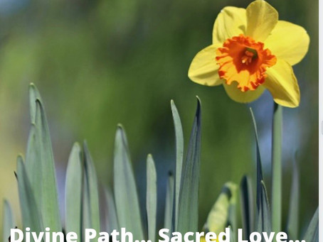 Divine Path... Sacred Love ...
