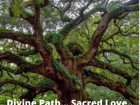 Divine Path… Sacred Love…