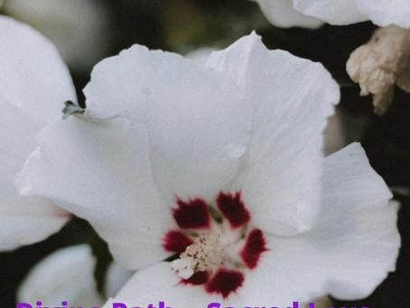 Divine Path... Sacred Love...