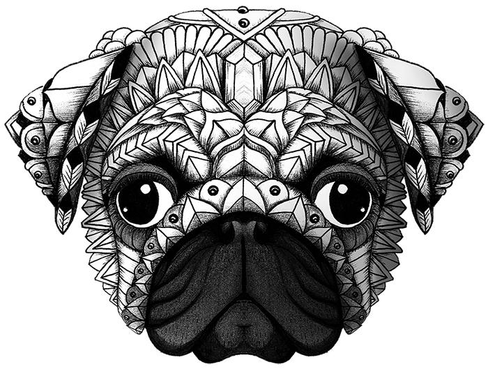Ornate Pug