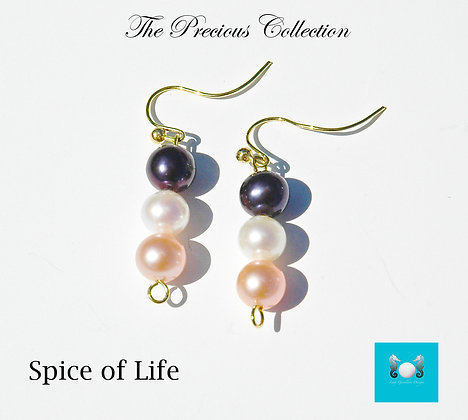 Spice of Life Earrings