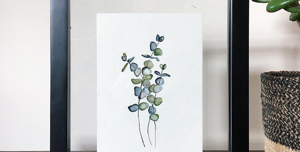 Framed Botanical Print (of your choice)