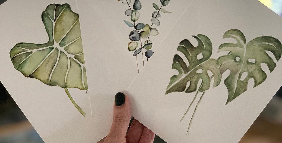 Set of Three Botanicals