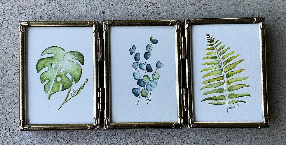 Botanical Trio
