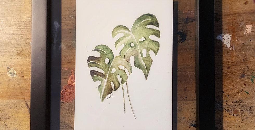 Framed Monstera leaves