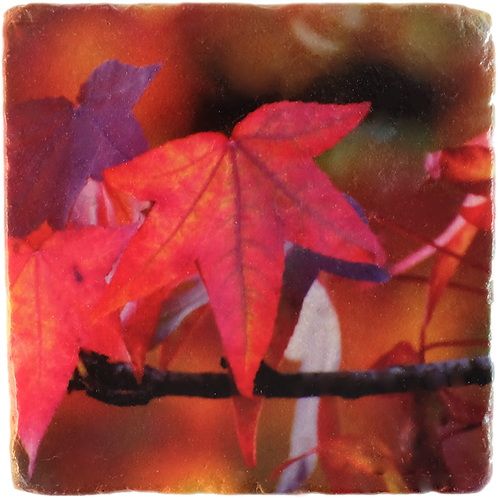 Marble Art Coaster  - Autumn Leaves 02