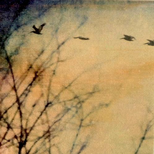 Wood Art Panel - Foggy Birds