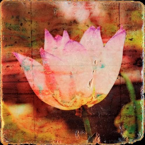 Marble Art Photo Coaster - Lotus Flower