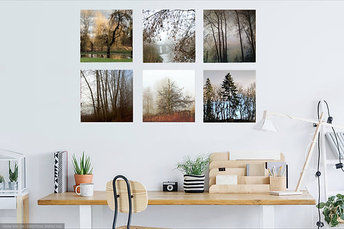 Wood Art Photo Panels in a variety of sizes.