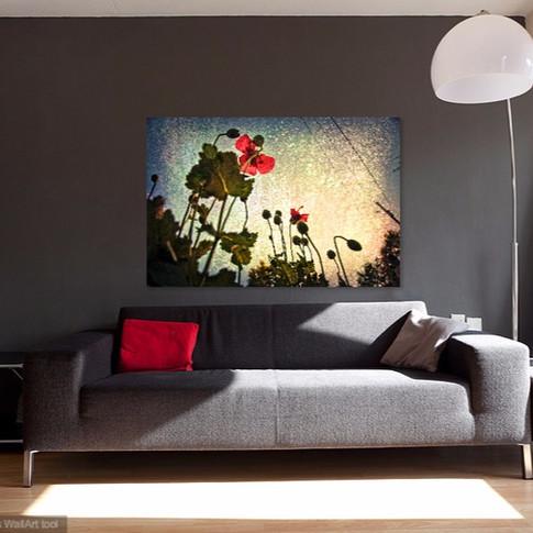 Garden Poppies - Living Room