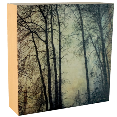 Wood Art Photo Block - Foggy Fraser Trees - Photo Images printed on Marble and Wood
