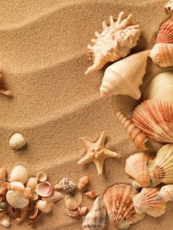 Морская тема_145