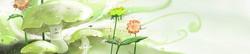S_цветы_190