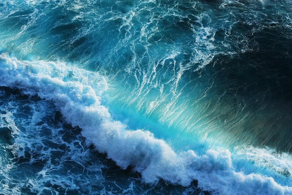 Морская тема_231