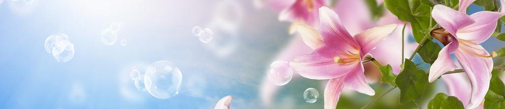 S_цветы_081