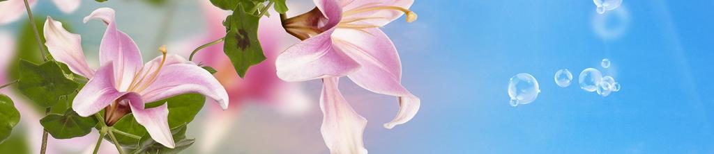 S_цветы_082