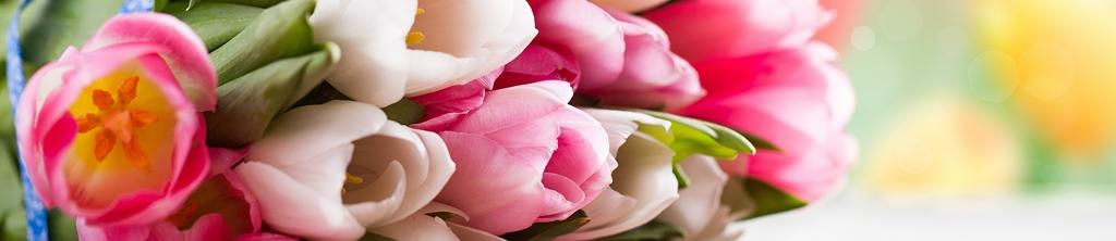 S_цветы_182