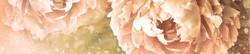 S_цветы_163