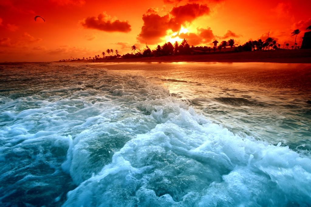 Морская тема_291