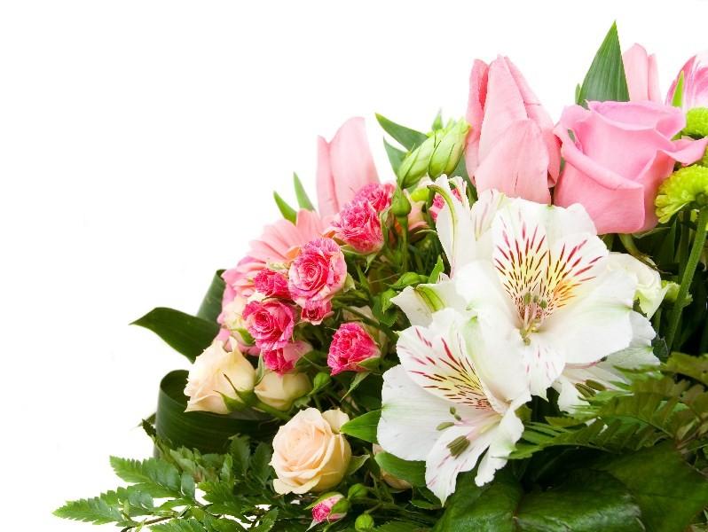 Цветы_168