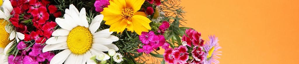 S_цветы_198