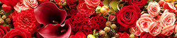 S_цветы_138