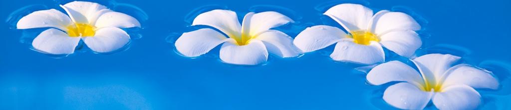 S_цветы_122