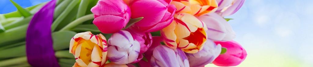 S_цветы_277