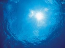 Морская тема_298
