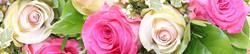 S_цветы_179