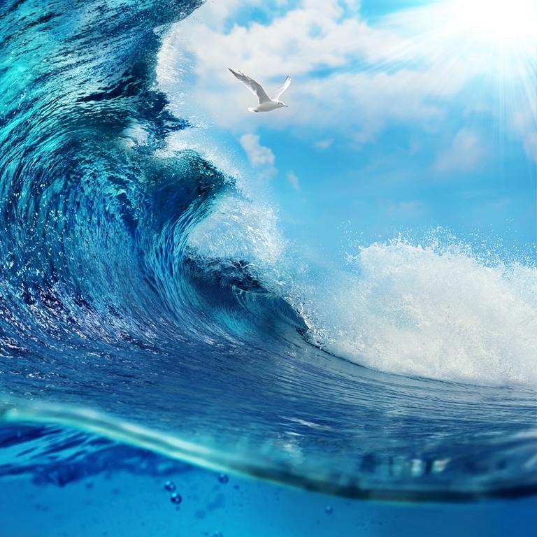 Морская тема_054