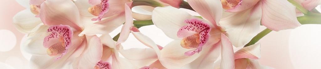 S_цветы_026
