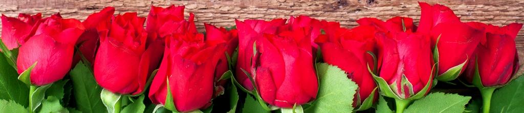 S_цветы_045