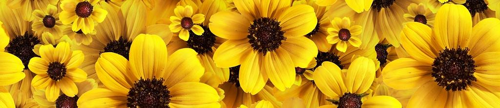 S_цветы_112