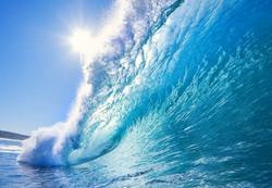 Морская тема_349