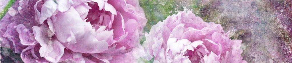 S_цветы_156