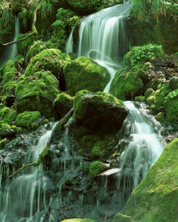 Мир водопадов_087