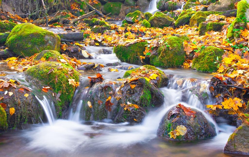 Мир водопадов_060