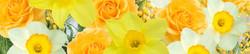 S_цветы_150