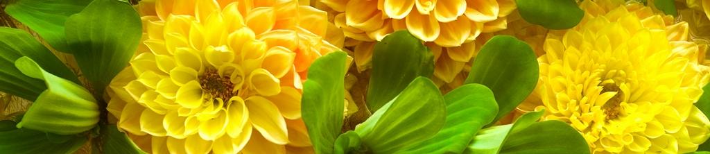 S_цветы_022