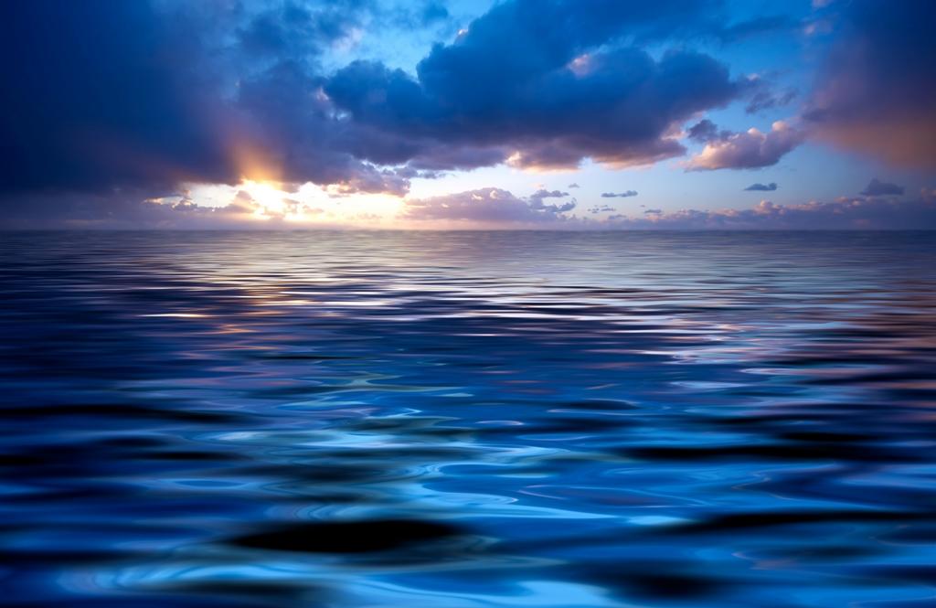 Морская тема_341