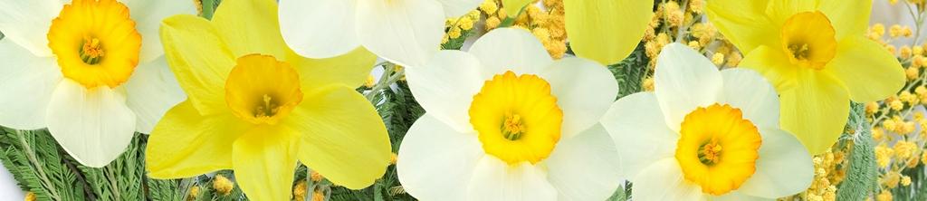 S_цветы_149
