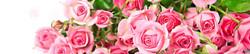 S_цветы_054