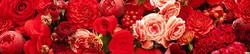 S_цветы_056