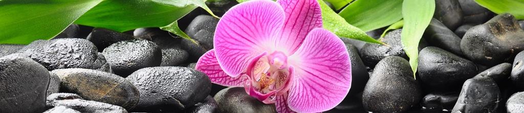 S_цветы_134