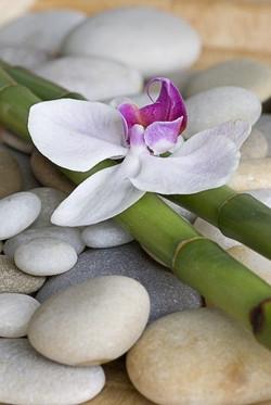 Цветы_066