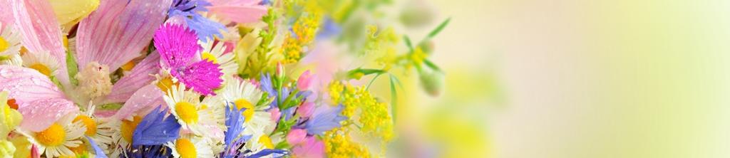 S_цветы_014